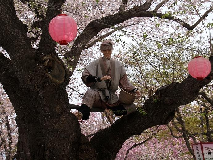 烏帽子山公園で木登りする爺さん?
