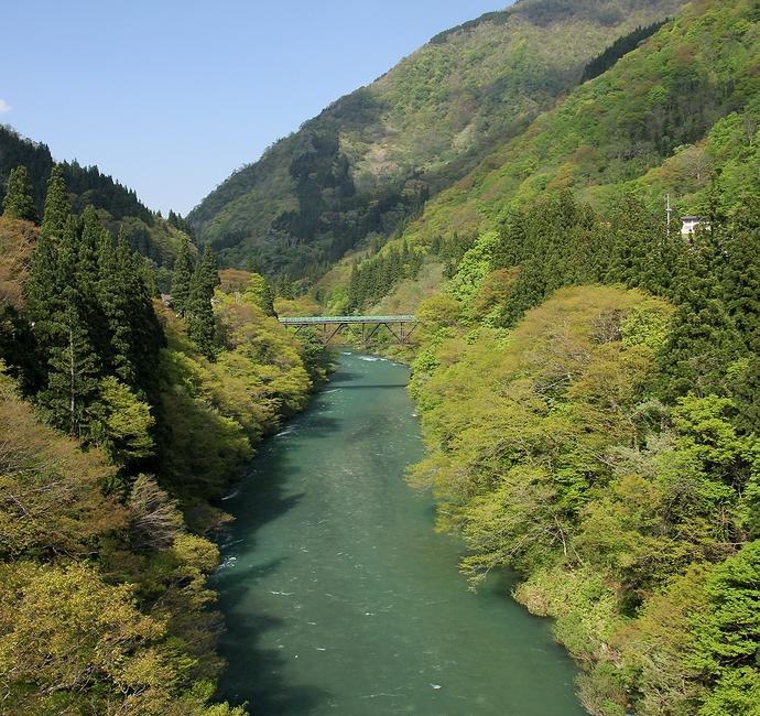 緑鮮やかな庄川の流れ 富山県五箇山