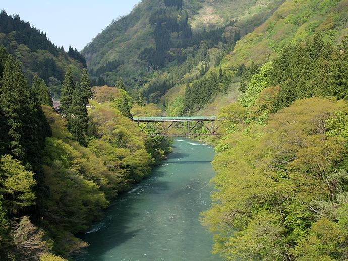若葉が萌える初夏の五箇山 庄川の流れ