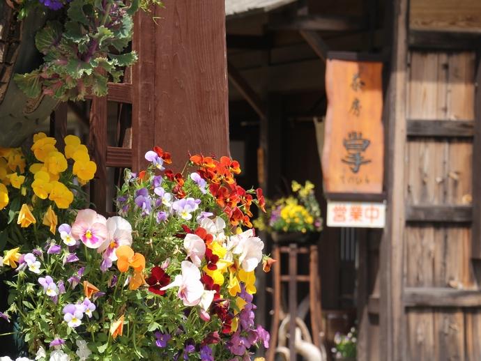 花に彩られた合掌造り