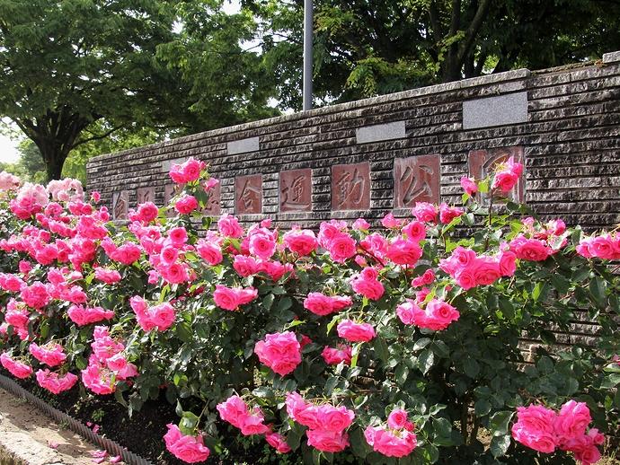 金沢南総合運動公園のエントランス