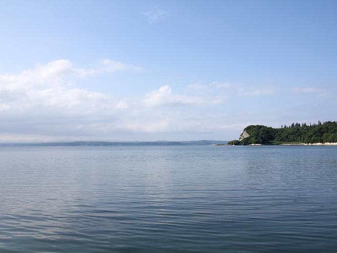 野生のイルカに会える海(能登島)