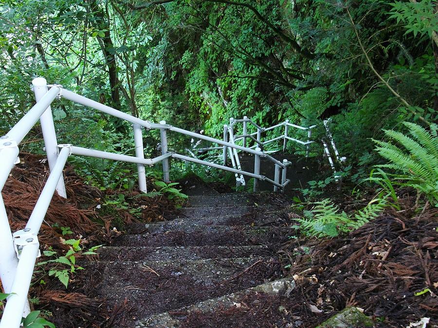 綿ヶ滝へ下りる遊歩道(白山市手取峡谷)