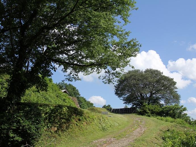 鳥越城 本丸に向かう散歩道