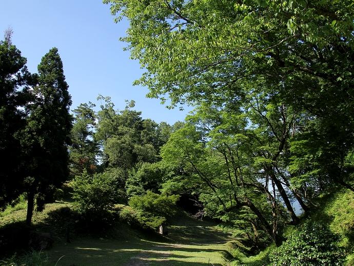 緑溢れる散歩道(白山市鳥越の鳥越城にて)