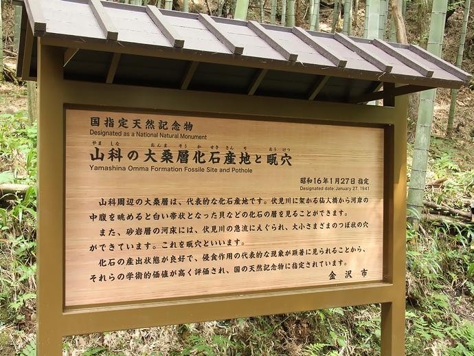 「国指定天然記念物山科の大桑層化石産地と甌穴」の案内板