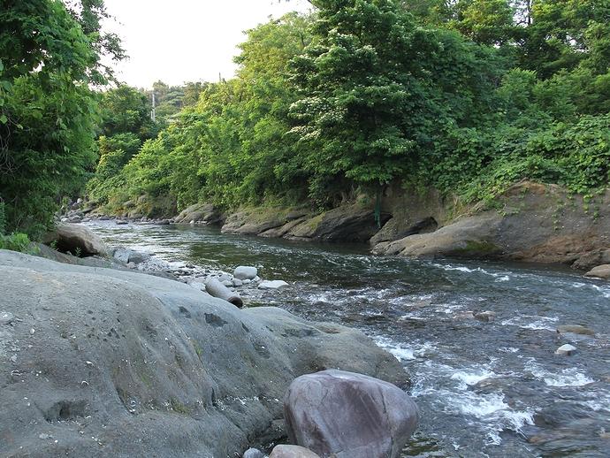 大桑層露頭と犀川の流れ(金沢市大桑町にて)