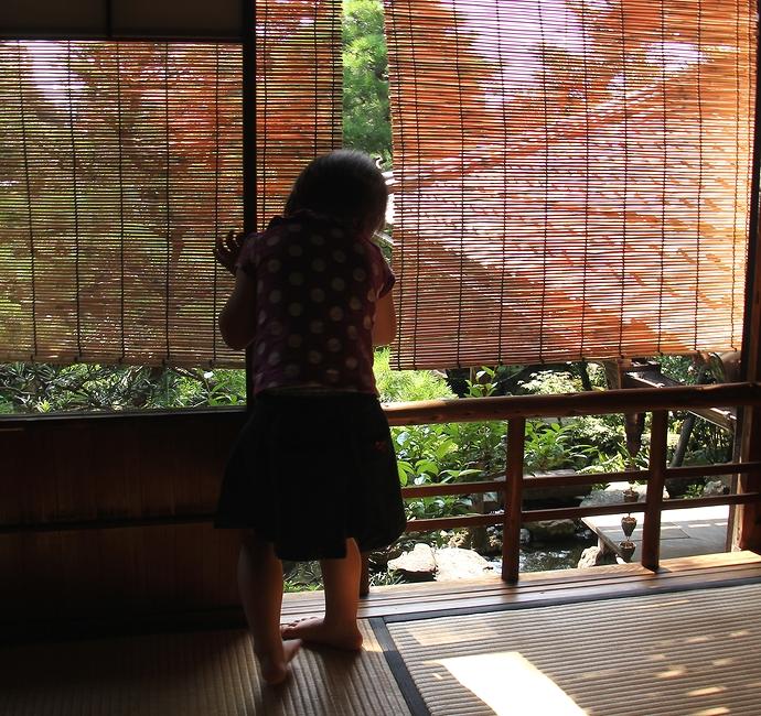 茶室から庭園を見下ろして(金沢市長町の武家屋敷)