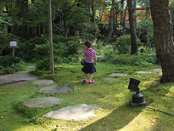 緑がいっぱい!綺麗な苔 金沢市玉泉園にて