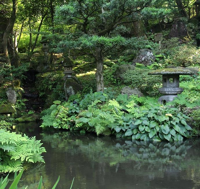 金沢市の日本庭園 玉泉園の様子