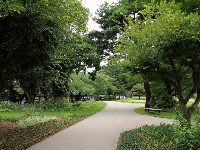 街中のオアシス 金沢城公園の緑