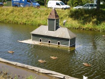 水鳥のお家