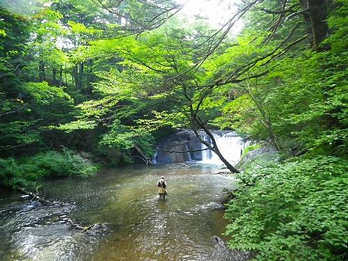 2014 7 26湯川 (10)