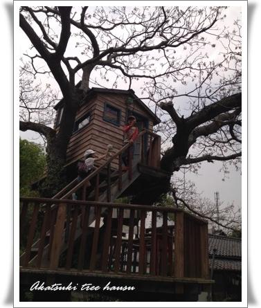 アカツキツリーハウス201407