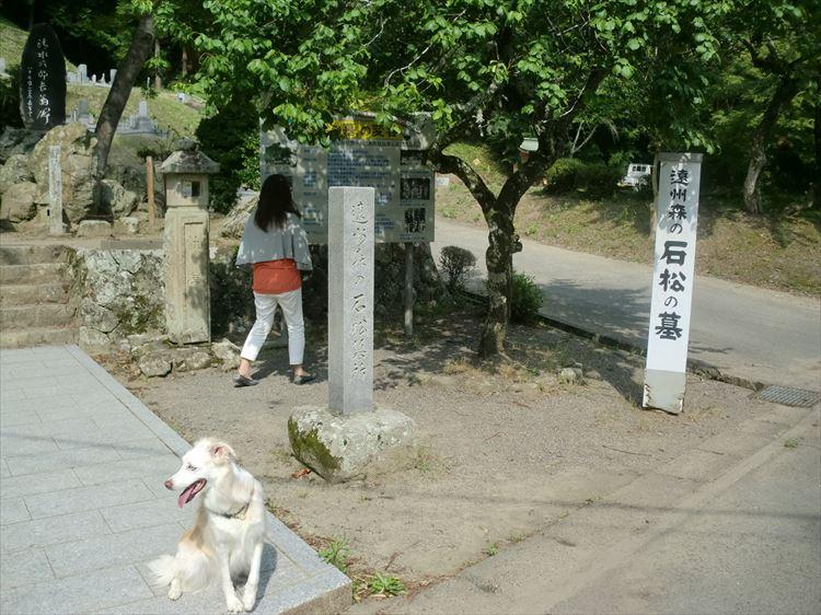 CIMG4683_R.jpg