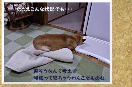 コルクボード・あご枕