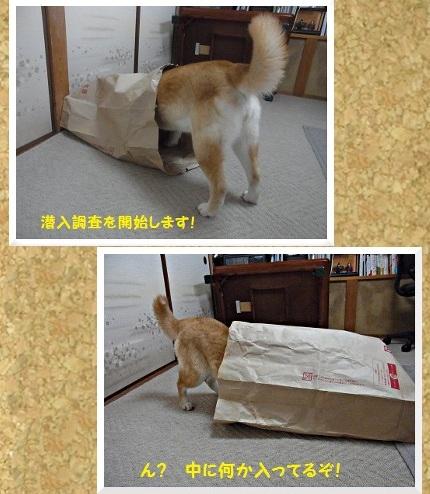 コルクボード・紙袋