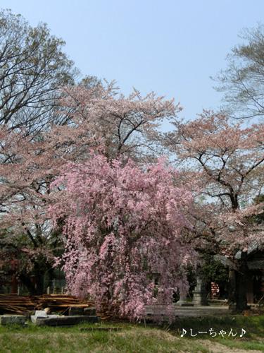 久保島大神社 #2_01
