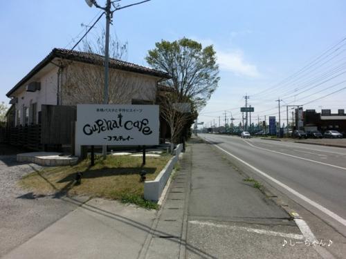 Cupchai cafe_01