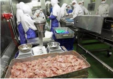「上海福喜食品」の工場内