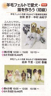 IMG_0004kashiwa.jpg