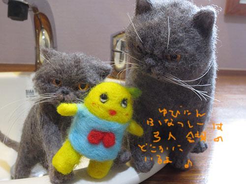 IMG_8906funasshi.jpg