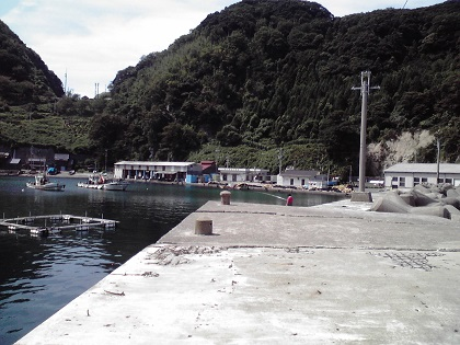 20140331蒲入漁港 (4)