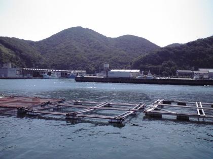 20140720阿尾漁港 (8)港内