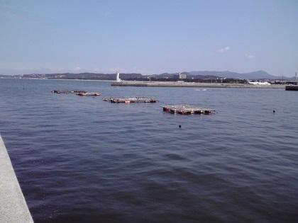 20140725湊港10