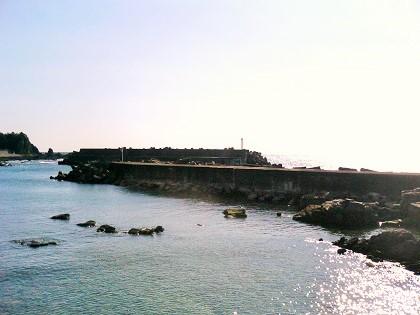 20140810見老津漁港 (6)
