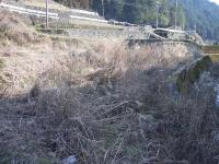 2009.1takkyubinhatake susuki 037