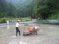 2010.6-7 tanboayuasobibakabutomushi 017
