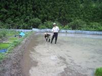 2010.6-7 tanboayuasobibakabutomushi 030