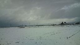 3月10日雪