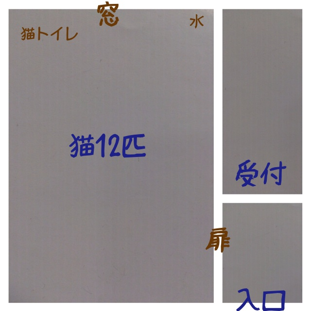 20140522214425b94.jpg
