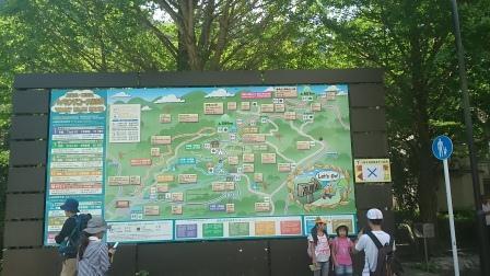 20140803高尾山①