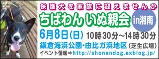 shounan20140608_320x120.jpg