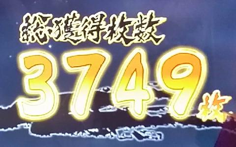 4457-2.jpg