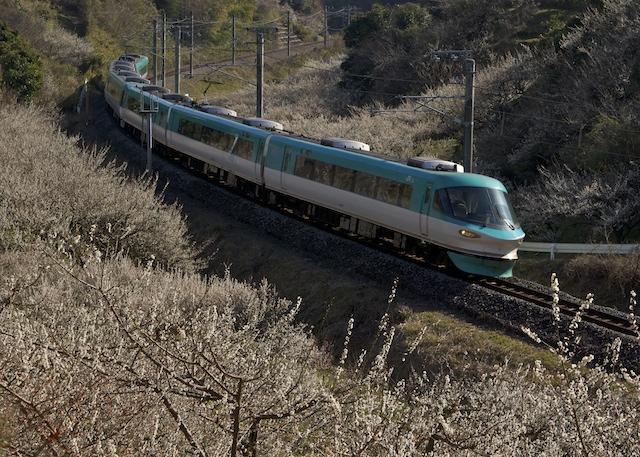 140222-JR-W-283-kuroshio-shinnjou-ume.jpg