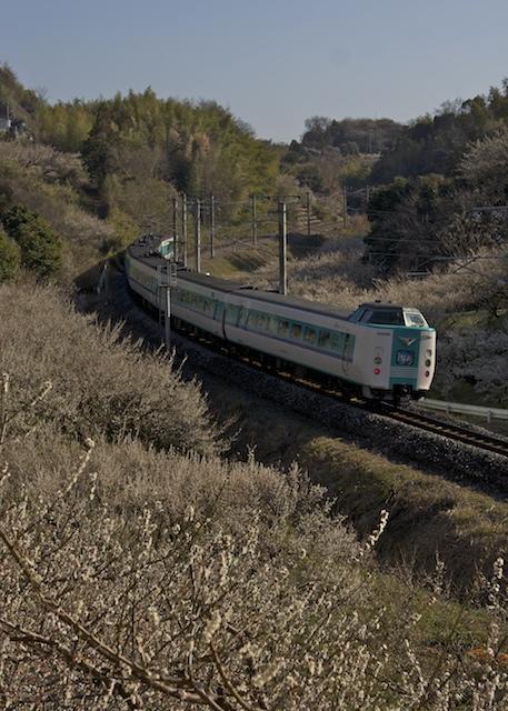 140222-JR-W-381-kurohio-6cars.jpg