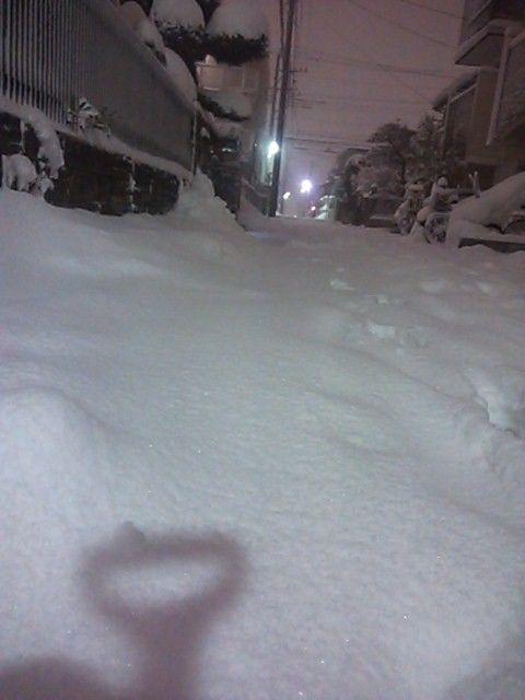 大雪2014-2
