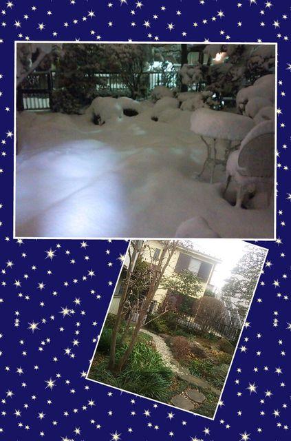 大雪2014-7