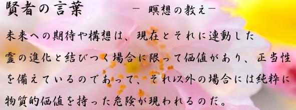 DSC_6483-3_20140219154600abf.jpg