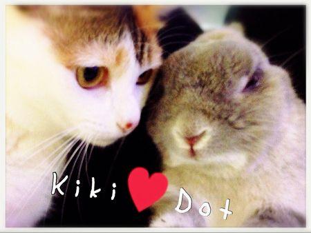 kiki&dot