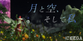 pso20140130_034735_02911125.png