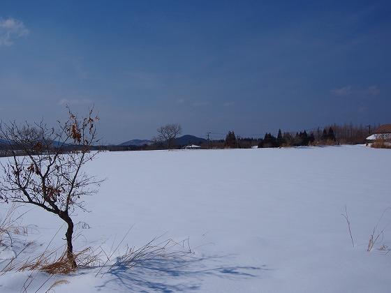 P2220112.jpg