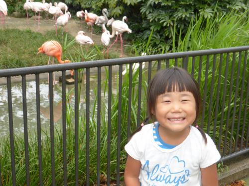 動物園 2