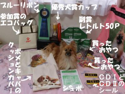 001繝シ繧ウ繝。繝ウ繝・convert_20140502220511