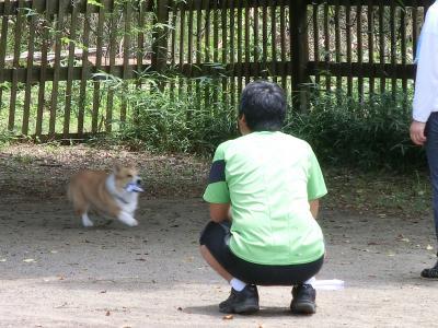 010繝シ繧ウ繝斐・_convert_20140701210210
