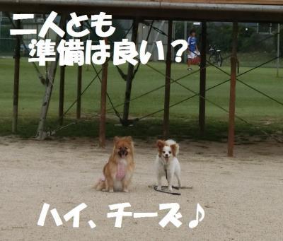 013繝シ繧ウ繝斐・繧ウ繝。繝ウ繝・convert_20140818213034